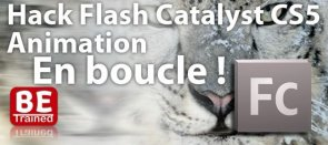 Tuto Hack Flash Catalyst: créer une Animation en BOUCLE Flash Catalyst