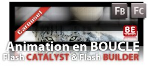 Tuto Animation en BOUCLE (autre technique) Flash Catalyst