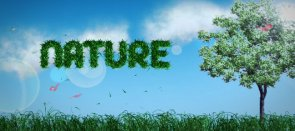 Tuto Compositing animé Nature After Effects