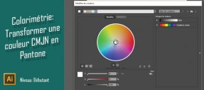 Tuto Gratuit Illustrator : Transformer une couleur CMJN en Ton Direct Illustrator