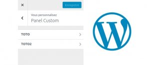 Tuto A la découverte de l'API Customize de WordPress WordPress