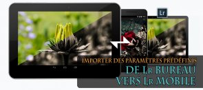 Tuto Importer des Paramètres Prédéfinis de Lightroom Bureau vers Lightroom Mobile Lightroom