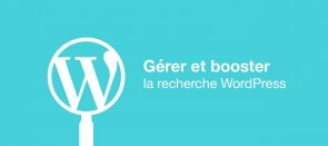 Tuto Comment booster la recherche WordPress WordPress