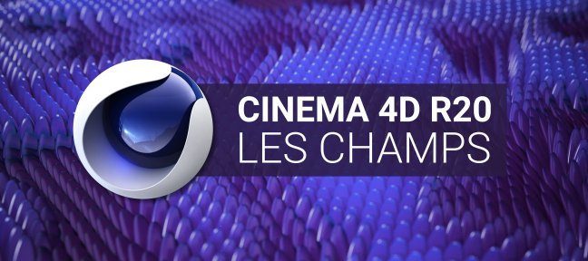 Tuto Cinema 4D R20 : Les Champs Cinema 4D
