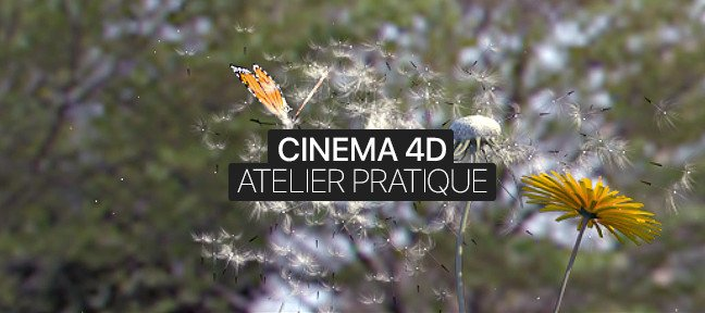 Atelier Pratique Cinema 4D : La force du papillon