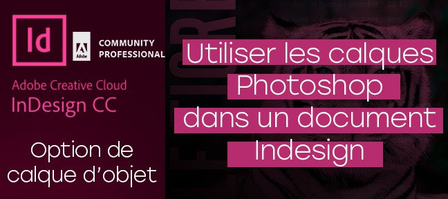Tuto Gratuit Indesign : Option de calques d'objet Indesign