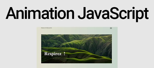 Animation page d'accueil en JavaScript