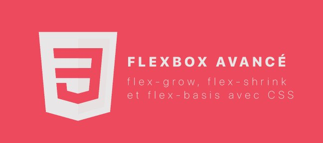 Tuto Flexbox Avancé : flex-grow, flex-shrink et flex-basis CSS