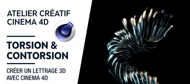 Atelier créatif - Torsion et Contorsion - Lettrage 3D