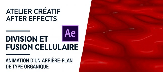 Tuto Atelier créatif - Division & fusion cellulaire After Effects