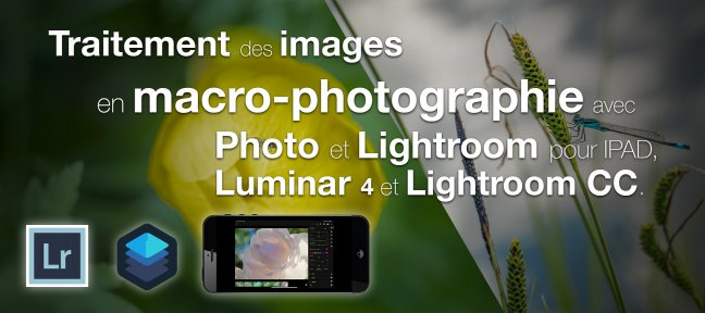 Tuto Traitement des images en macro-photographie Photo