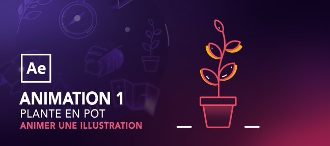 Animer une illustration avec After Effects : Plante en pot