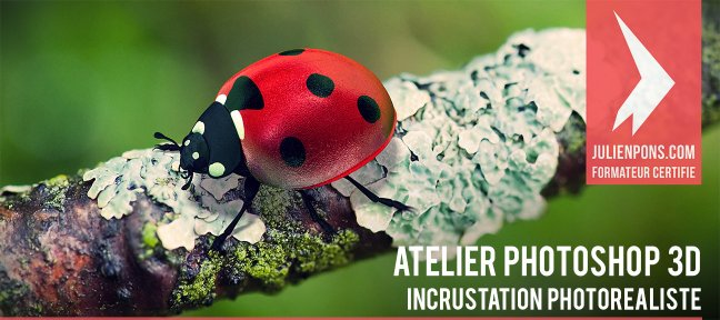 Atelier 3D : incrustation photo réaliste d'une coccinelle