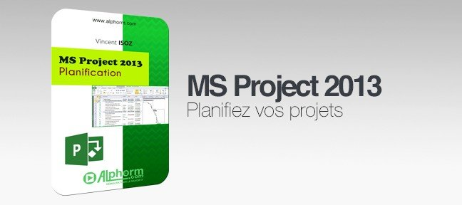 Formation MS Project 2013