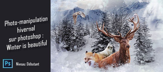 Photo-manipulation hivernale sur Photoshop : Winter is beautiful