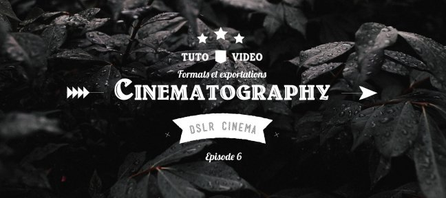DSLR Cinematography - Episode 06 : Formats et exportation