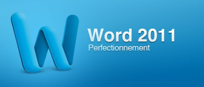 image Word 2011 perfectionnement