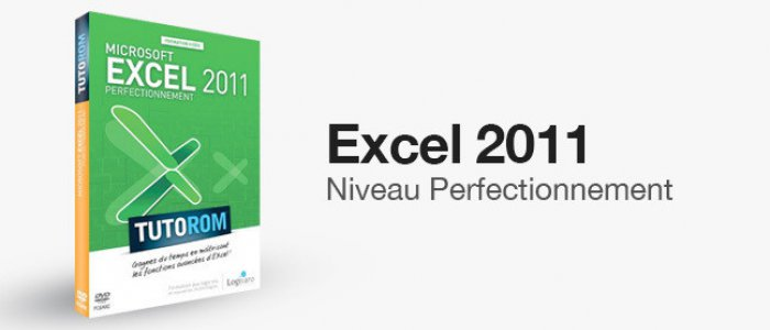 image Formation Excel 2011 - Perfectionnement