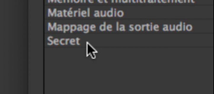 Tuto MODE SECRET Forcer les exports ! After Effects