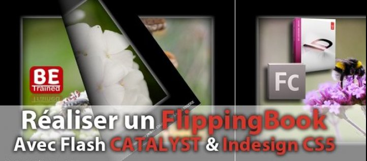 Tuto Réaliser un Livre Virtuel (FlippingBook) Flash Catalyst