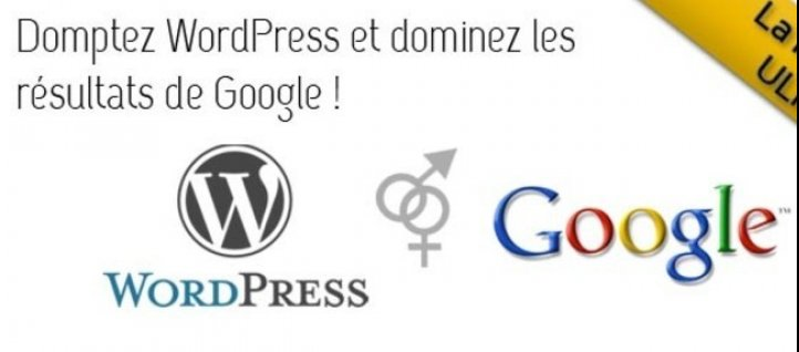 Tuto Référencement WordPress: la formation ultime ! Referencement SEO