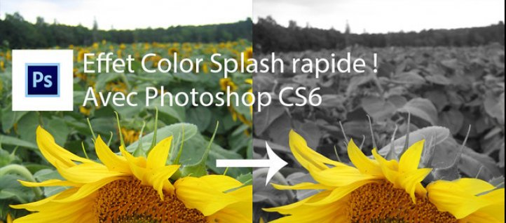 Tuto Effet Color Splash Photoshop