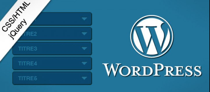 Tuto Un menu accordéon dans une page à partir de l'admin WP WordPress