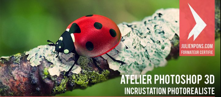 Tuto Atelier 3D : incrustation photo réaliste d'une coccinelle Photoshop